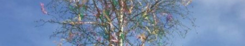 Maibaum der KiTa St. Clara